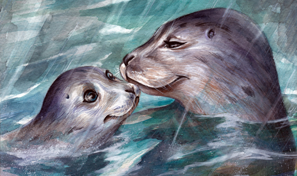 Simon & Sedef: A Seal's First Adventure